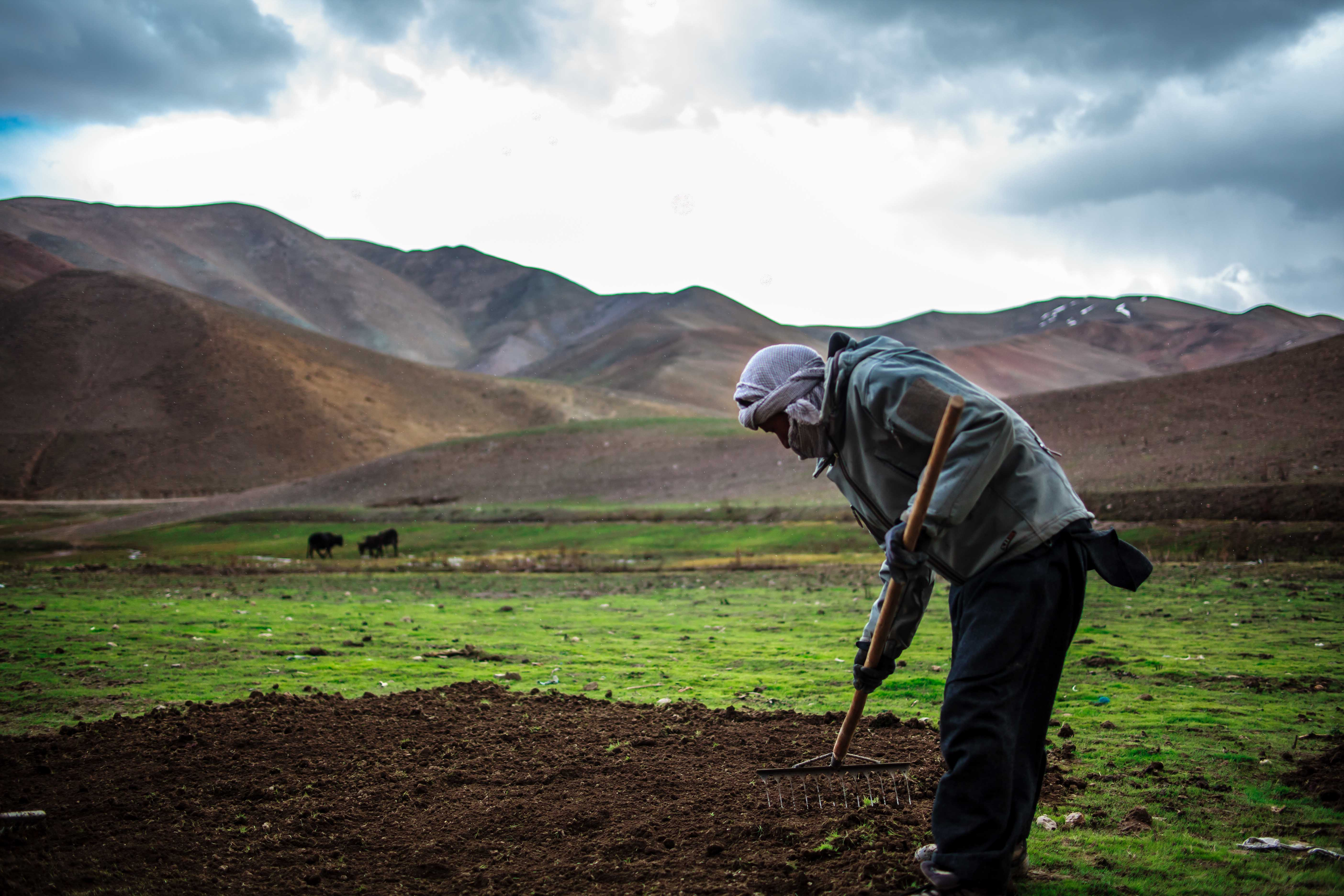 A man farming in the mountains of Afghanistan