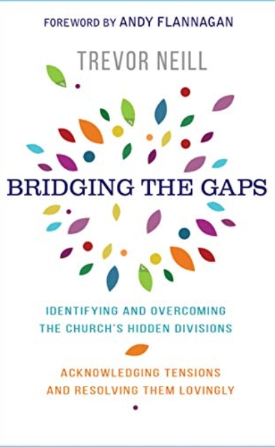 Bridging the Gaps - Neill